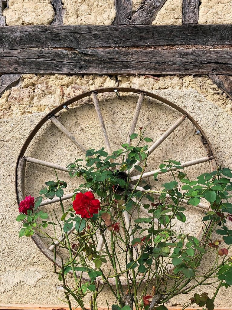 old-wheel-pignoulet