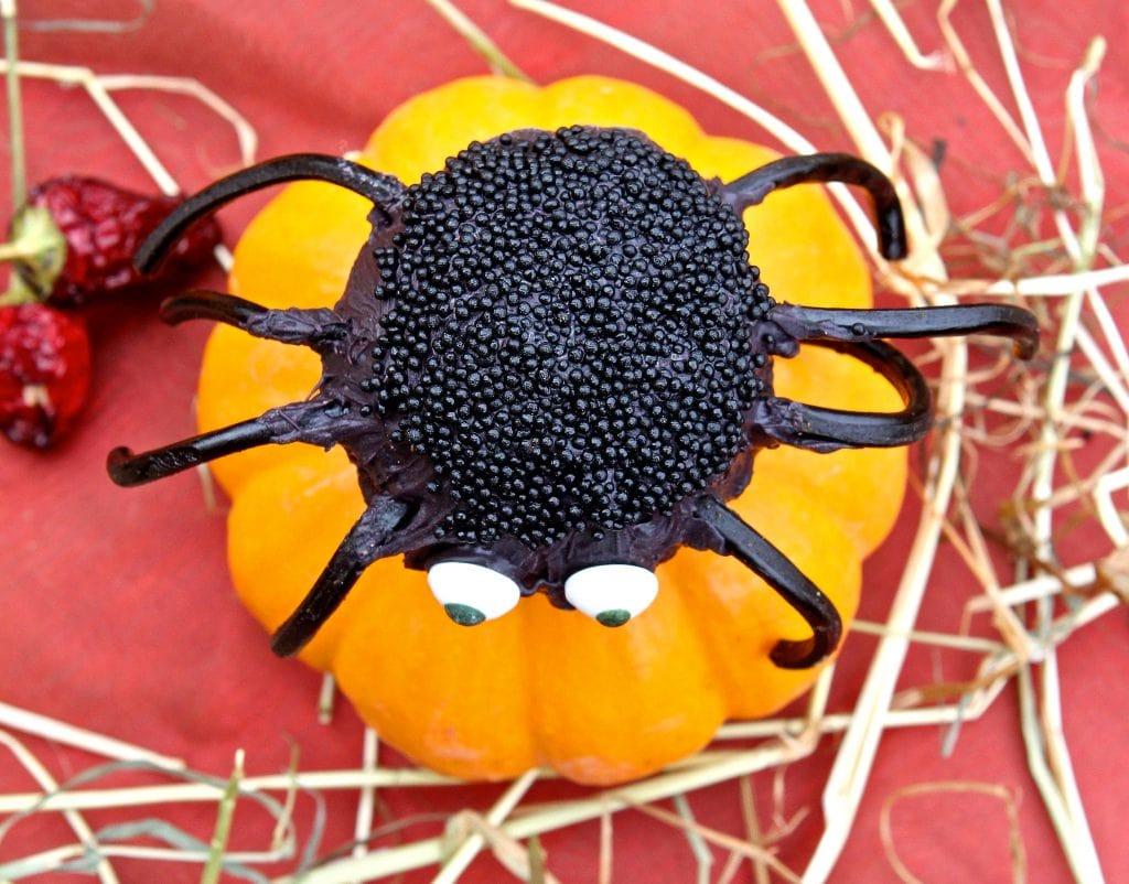 cake-pop-spiders