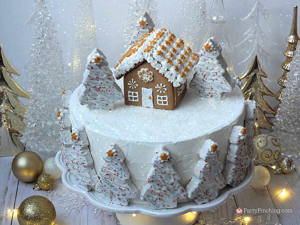 winter-wonderland-cake-party-pinching